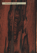 Aspect (texture) bois : palissandre de Rio